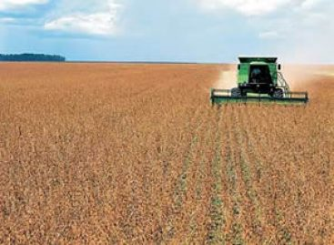 Mercosul oferece prêmio voltado para a Agroindústria