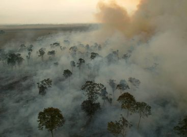 Amazônia perde 578 km2 no mês de junho