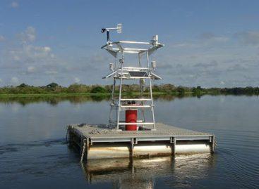 Sistema via satélite monitora floresta alagada no Amazonas e ajuda na conservação