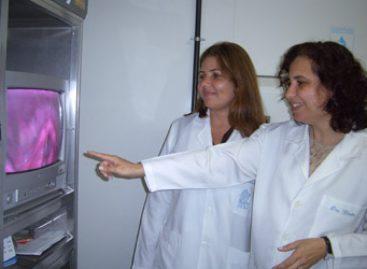 Terapia fonoaudiológica beneficia pessoas com sequelas de doenças infecciosas