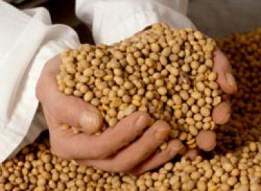 Cientista inglês propõe banco de dados de sementes no Brasil