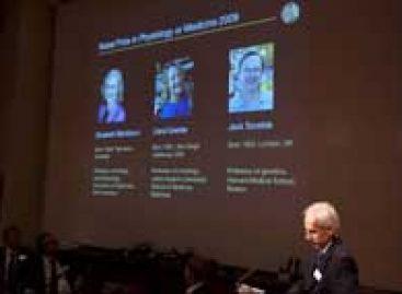 Pesquisa sobre proteção dos cromossomos recebe Nobel de medicina