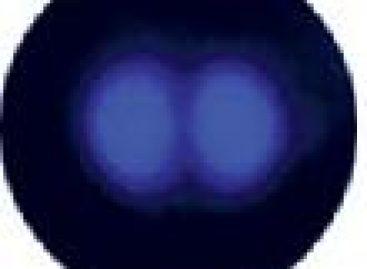 Fotografada a verdadeira forma dos átomos