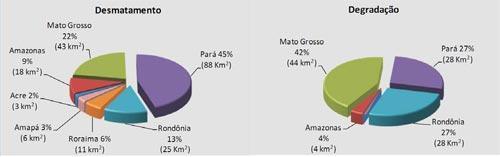 desmatamento_graficos2