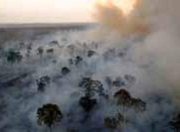 Inpe calcula emissões de CO²2 por desmatamento na Amazônia