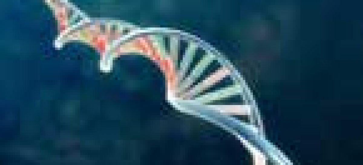 Terapia genética para deficiência visual se mostra efetiva no período de um ano