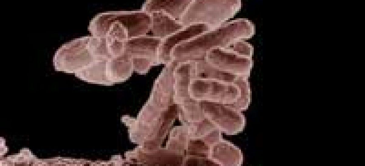 Mudança de agente da diarreia
