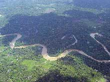 amazonia_biodiversidade