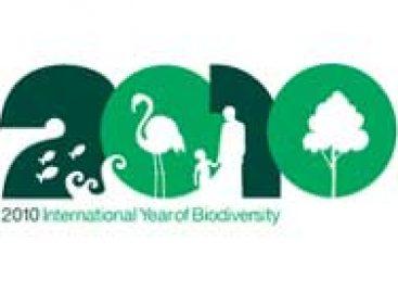 Ano da biodiversidade tem início