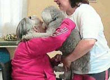 Terapia assistida com animais ajuda a tratar pacientes com Alzheimer