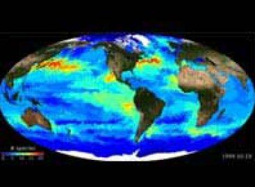 Microrganismos marinhos são mapeados