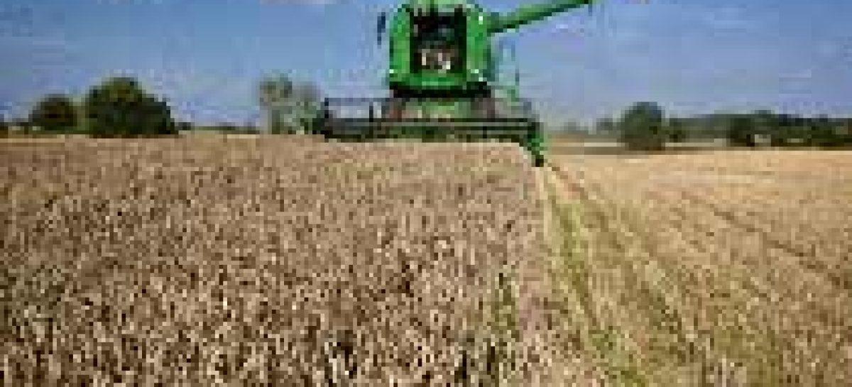 Pesquisas avaliam o desenvolvimento dos territórios rurais