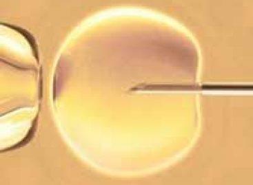 Bebês de proveta podem enfrentar maiores riscos de saúde