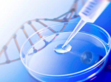 CNPq investe em Biotecnologia para estimular o desenvolvimento do Nordeste