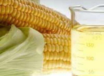 O etanol do milho é prejudicial ao clima?