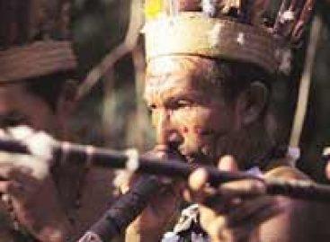Grupo investiga doenças respiratórias em indígenas