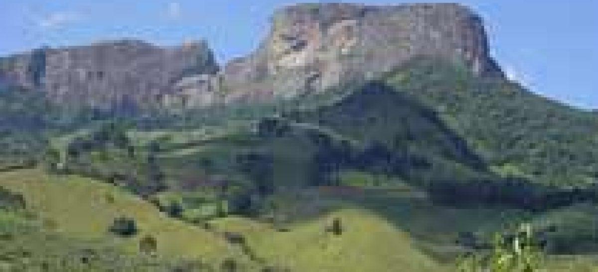 Vegetação cobre 17% do Estado de SP, diz mapa