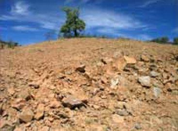 BNB recebe projetos de combate à desertificação
