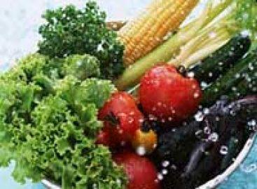 Inscrições abertas para curso de Vigilância Sanitária dos Alimentos