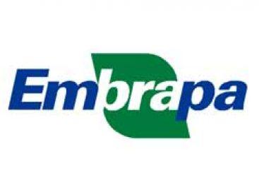 EMBRAPA abre seleção de candidatos a diretores executivos