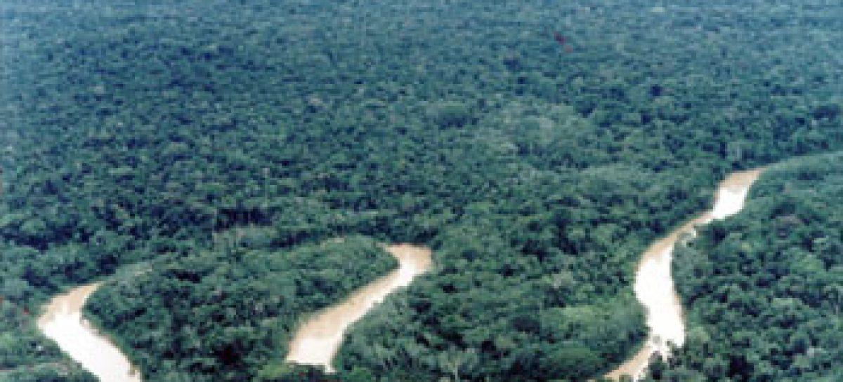 Edital estimula a formação de mais doutores para o Amazonas