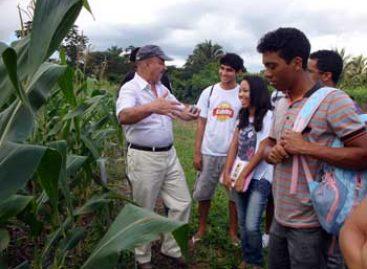 """Alternativas para um solo mais rico em nutrientes são apontadas no """"Dia de Campo"""""""
