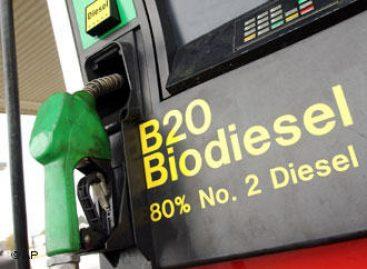 Pesquisa contemplada no PRONEX estuda processo de cristalização dos biocombustíveis