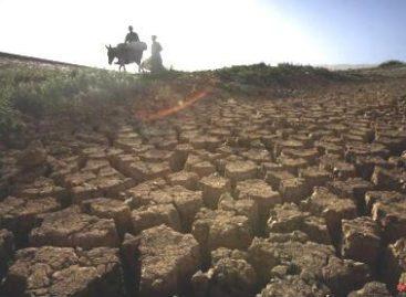 """Relatório sobre """"Riscos das Mudanças Climáticas no Brasil"""" mostra impactos na Amazônia"""