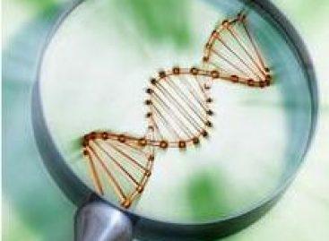 Oportunidade para pesquisadores do Nordeste