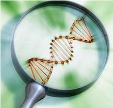 biotecnologia100523