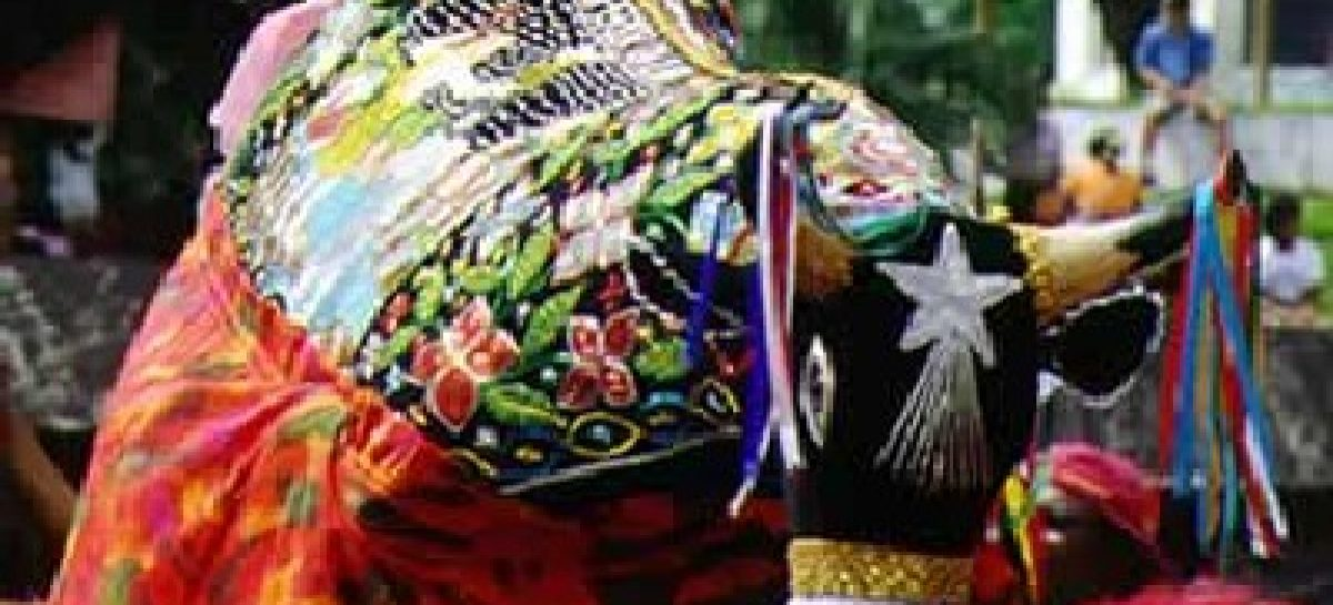 Bumba-meu-boi vira patrimônio histórico e artístico do Brasil