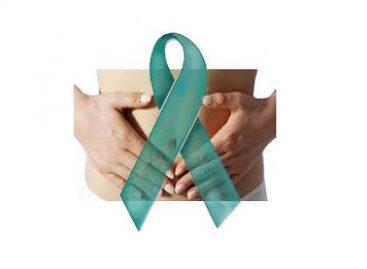 Droga brasileira combate câncer de ovário