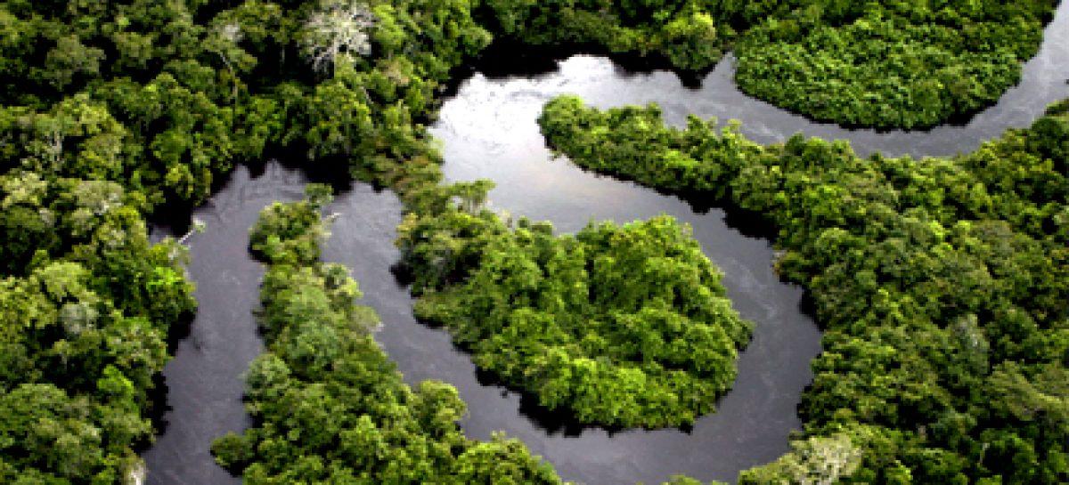 Plano de C,T& I  para o Desenvolvimento da Amazônia será discutido em São Luis por secretários de Ciência e Tecnologia e presidentes de FAPs