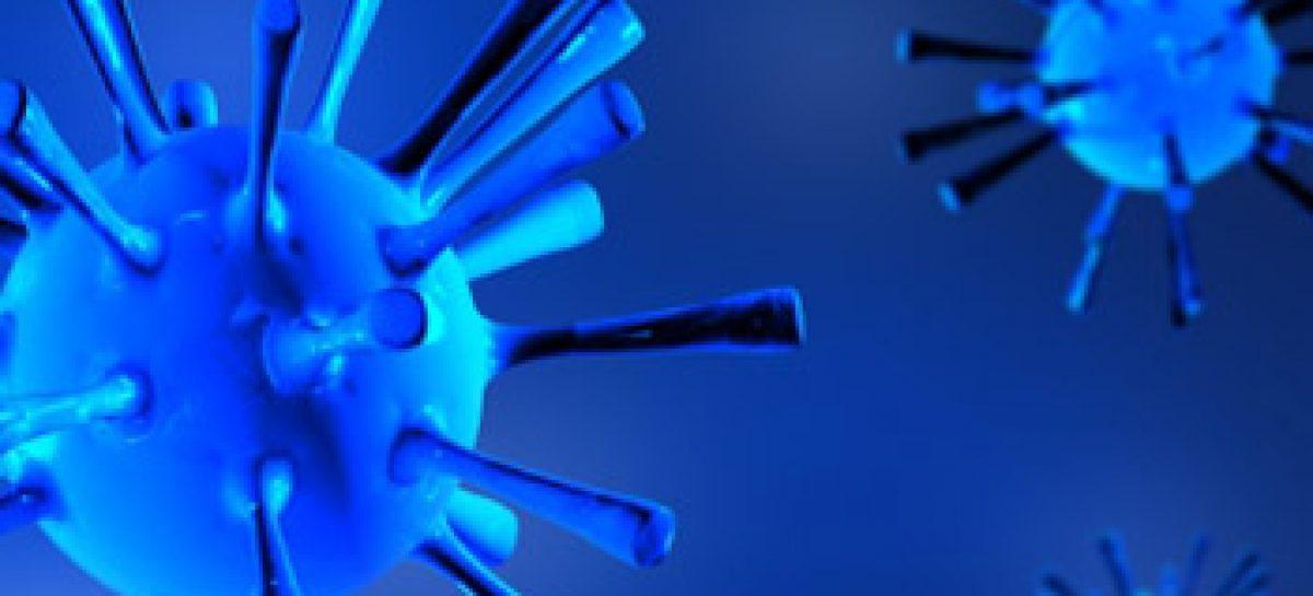 Dia da Imunologia 2013