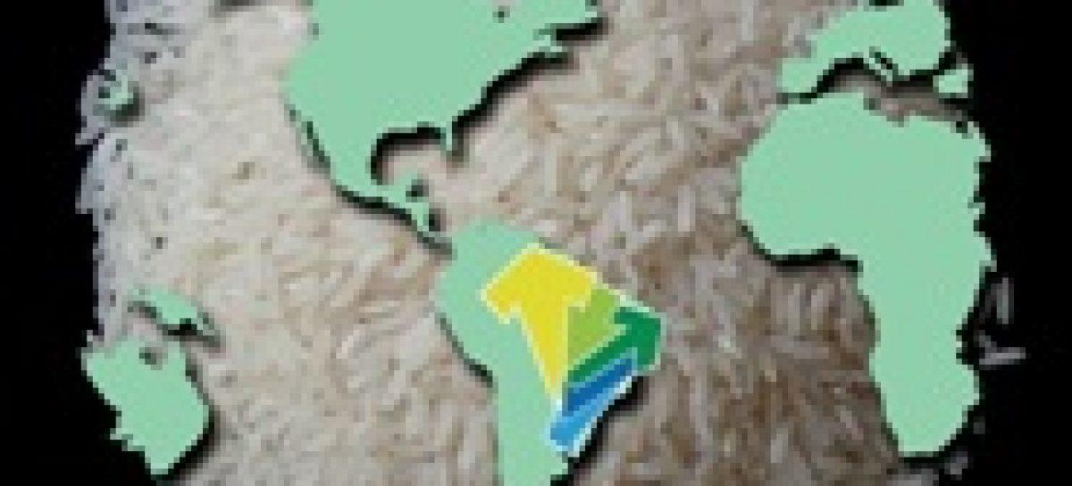 Workshop vai discutir cadeia do arroz no estado
