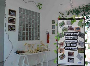 Exposições de História Natural ajudam a popularizar a Ciência em Chapadinha