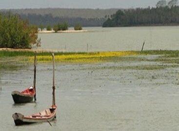 Inclusão social e preservação da Lagoa do Bacuri são estimuladas através de pesquisa com foco ambiental