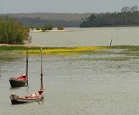 Lagoa do Bacuri 1