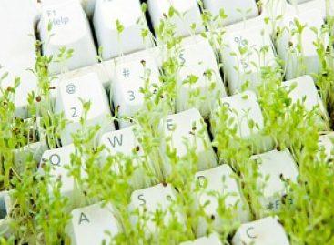 Inclusão tecnológica é usada na conservação da biodiversidade maranhense