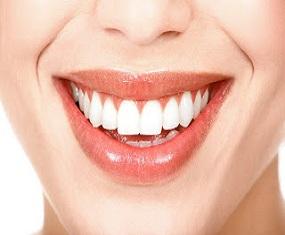Dentista-SC-Odontoquality-44