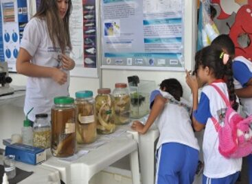 Escolas de São Luis aproveitam a IV Mostra Científica na SNCT para aproximar alunos da Ciência e Tecnologia