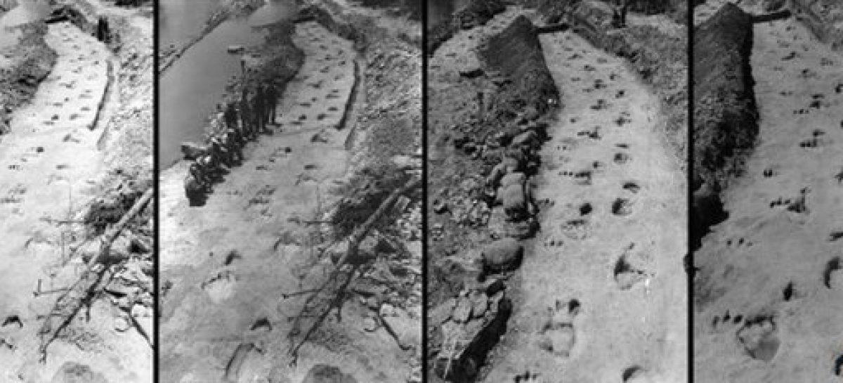 Cientistas reconstroem cenário de perseguição pré-histórica de dinossauros