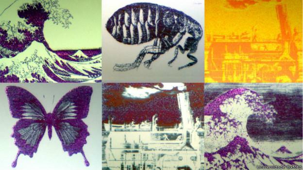140710212648 imagens microscopicas 624x351 universidadeoxford