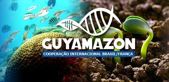 GUYAMAZON