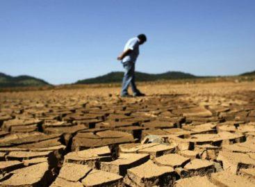 Por que 2014 pode ser o ano mais quente da história?