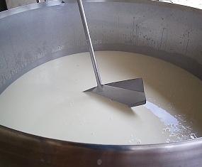 0 leite cadeia produtiva
