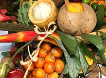 Polpas de frutas comercializadas nas feiras de São Luís têm qualidade analisada