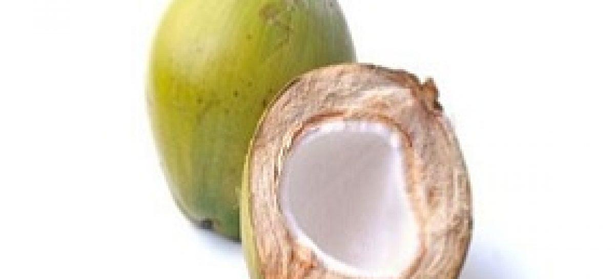 Projeto utiliza casca de coco para produzir placas de isolamento térmico e acústico