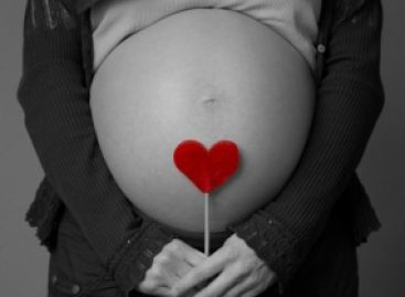 Pesquisa avalia a organização dos serviços do SUS que prestam atendimento a mulheres em situação de abortamento