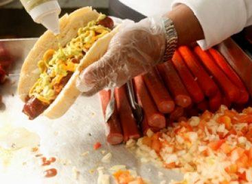 Pesquisa avalia a qualidade microbiológica dos alimentos comercializados nas ruas de São Luís